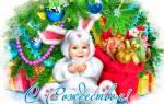 Лучшие поздравления и открытки с рождеством христовым. Поздравления с Рождеством Христовым – поздравляем с Рождеством красиво в стихах и прозе с картинками