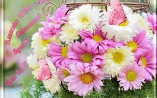 Поздравления с корзинами цветов открытки. Гифки розы, красивые букеты цветов. Скачать можно здесь