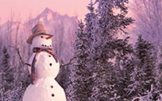 Поздравления кто родился зимой. Поздравления с днем рождения зимой