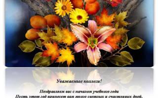 Поздравление с 1 сентября учителям коллегам короткие. Поздравления учителям с Днем знаний (1 сентября)